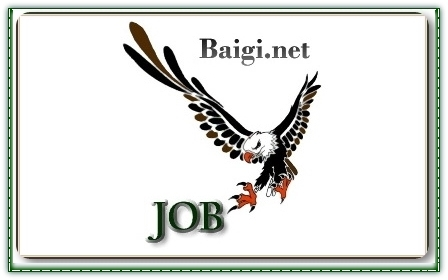 International Job Search Service